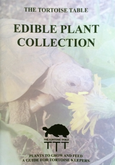 How to buy for Tortoise table org uk site plants